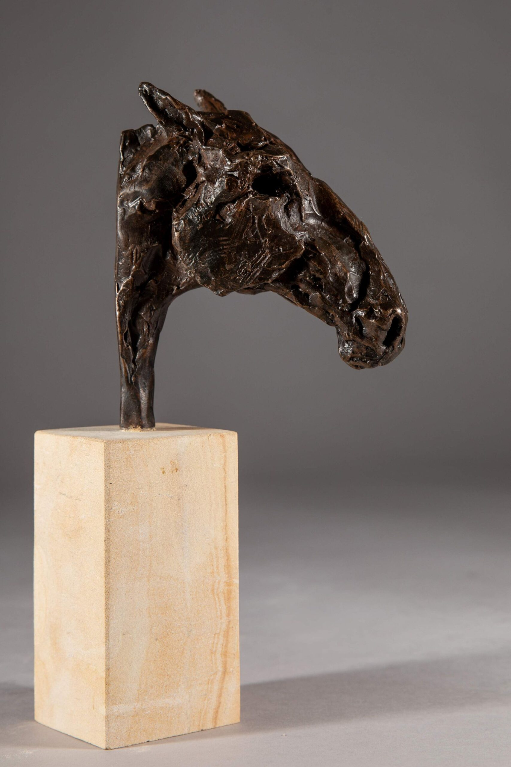 Sculpture - Bronze - Equestrian - Roman Horse Head 1