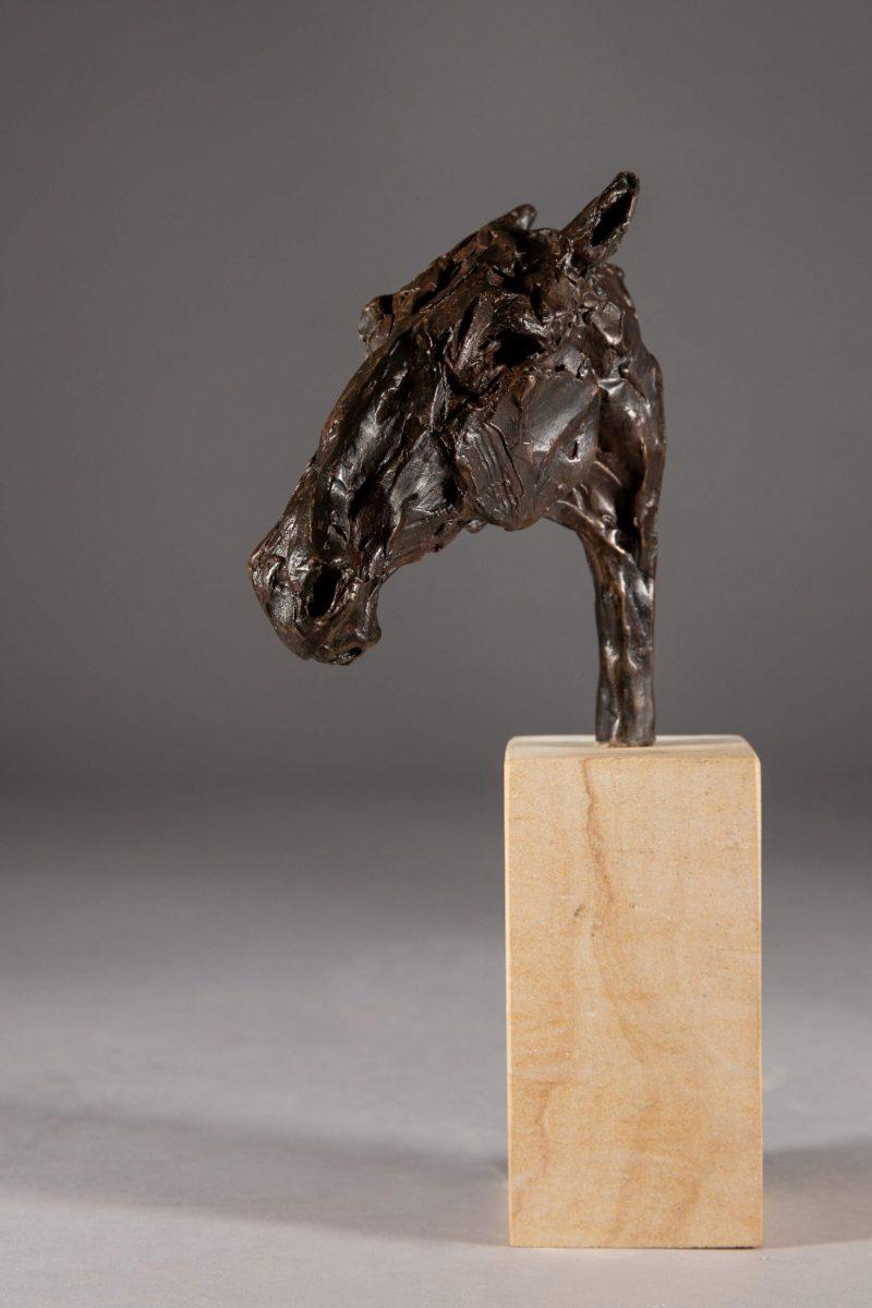 Sculpture - Bronze - Equestrian - Roman Horse Head 3