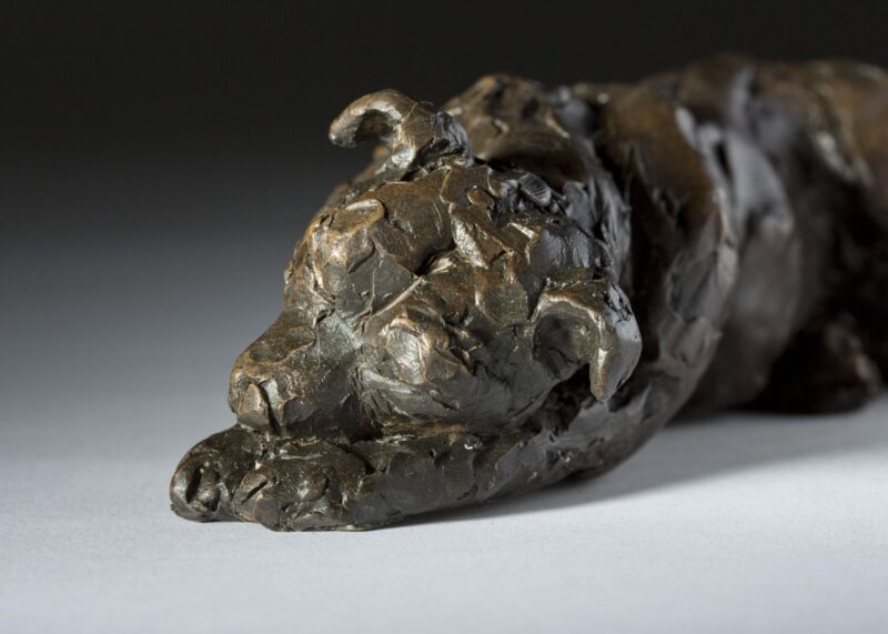 Sculpture - Bronze - Domestic Animal - Lying Staffordshire Bull Terrier 3