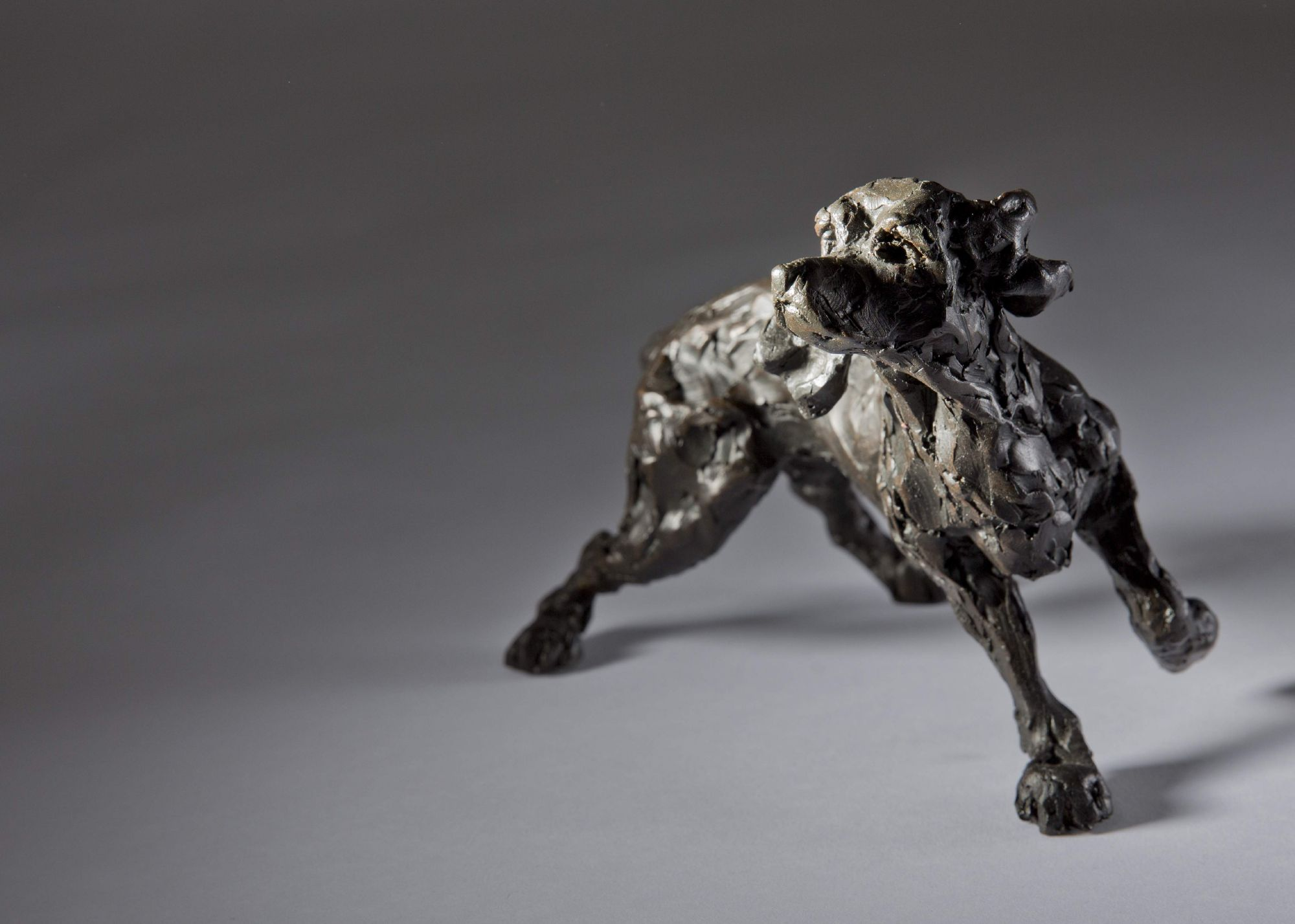 Sculpture - Bronze - Domestic Animal - Standing Spaniel 1