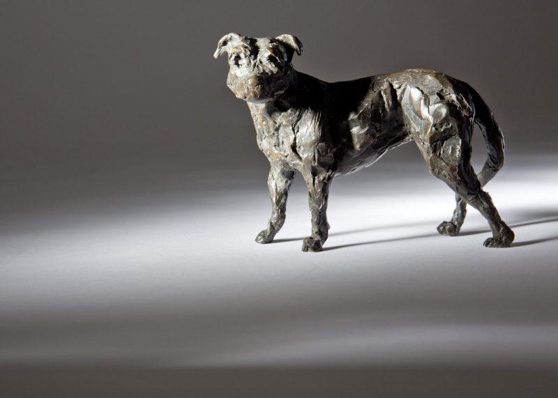 Sculpture - Bronze - Domestic Animal - Standing Staffordshire Bull Terrier 4