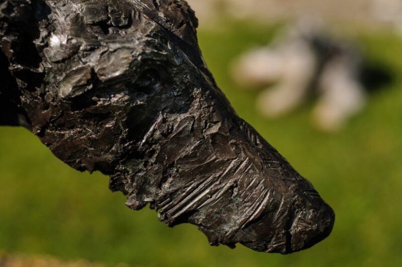 Sculpture - Bronze - Domestic dog - Garden Lurcher 11