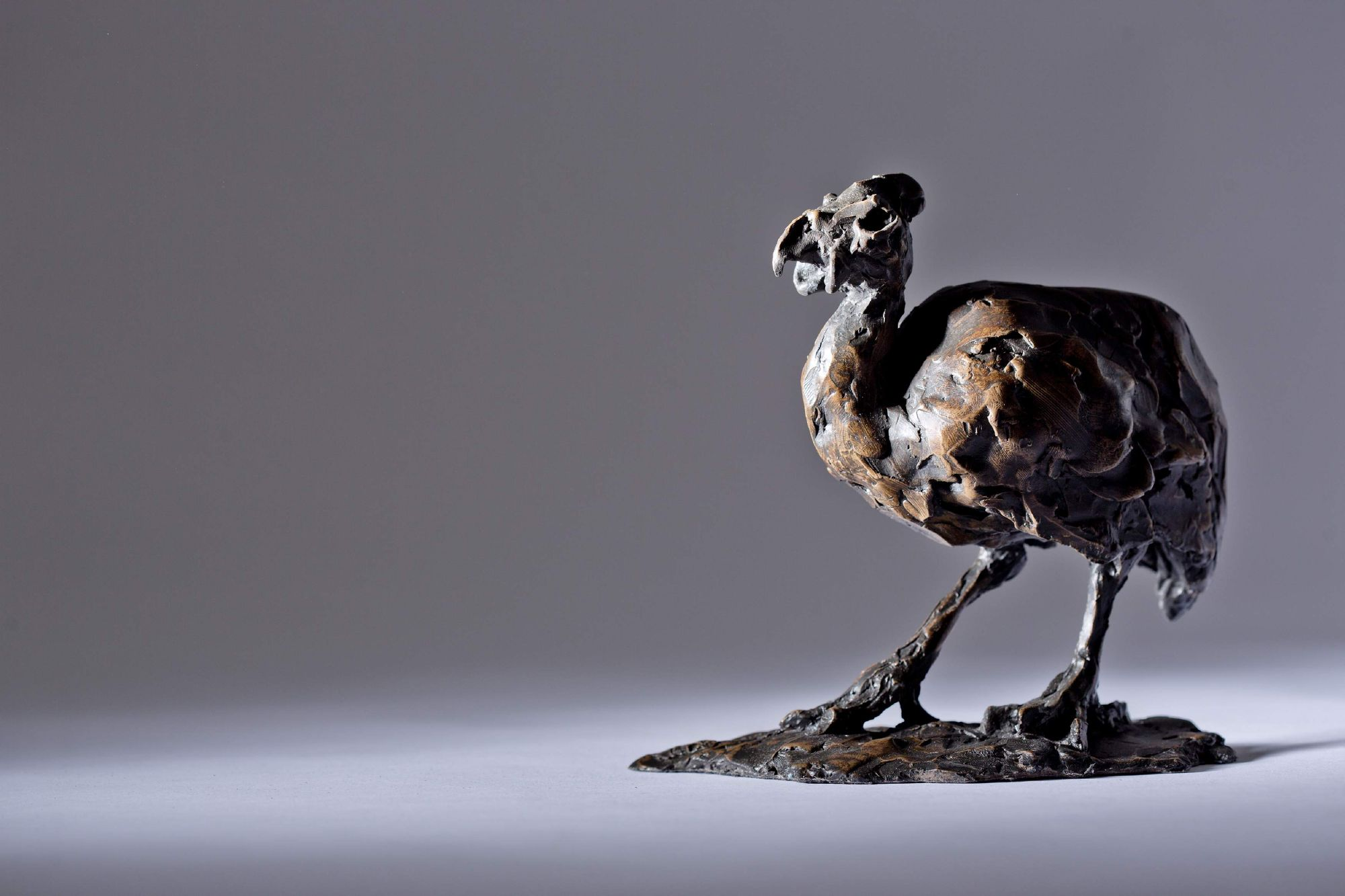 Sculpture - Bronze - Wildlife - Guinea Fowl 1