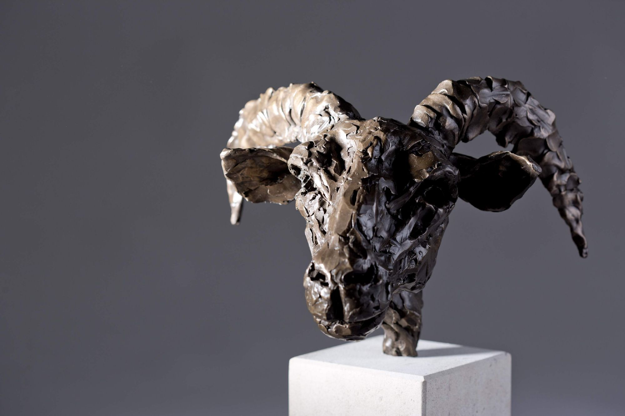 Sculpture - Bronze - Wildlife - Rams Head 2