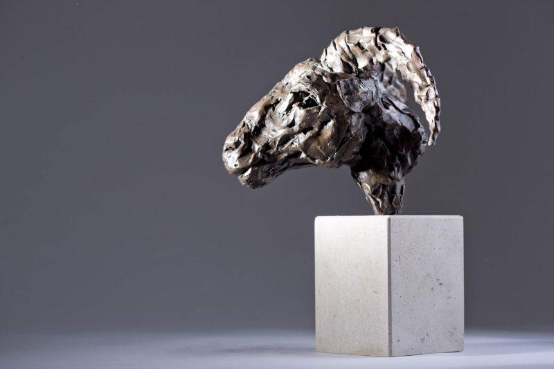 Sculpture - Bronze - Wildlife - Rams Head 3