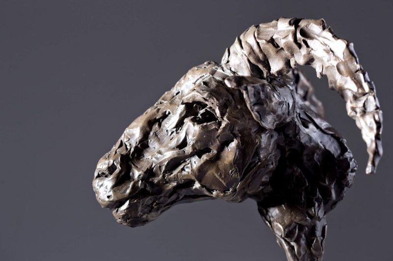Sculpture - Bronze - Wildlife - Rams Head 4