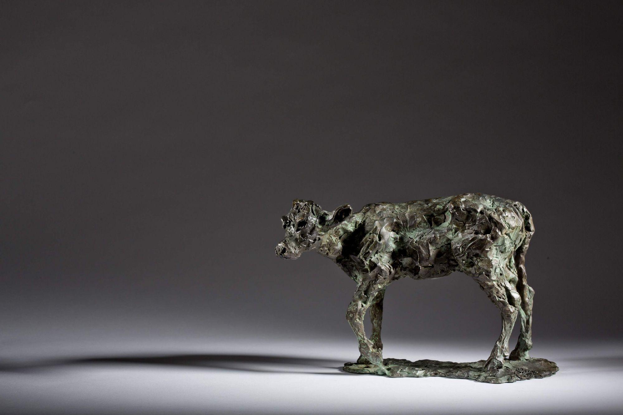 Sculpture - Bronze - Wildlife - Standing Calf 1