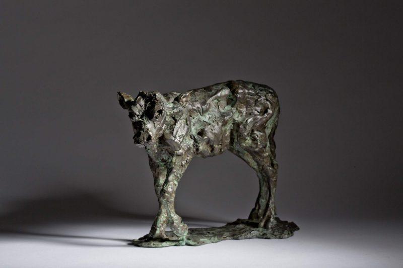 Sculpture - Bronze - Wildlife - Standing Calf 3