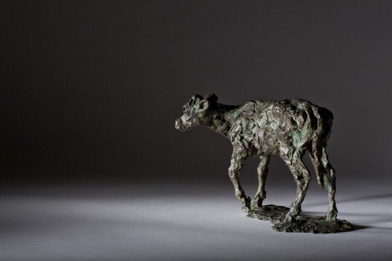 Sculpture - Bronze - Wildlife - Standing Calf 4