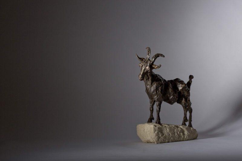 Sculpture - Bronze - Wildlife - Standing Goat 5