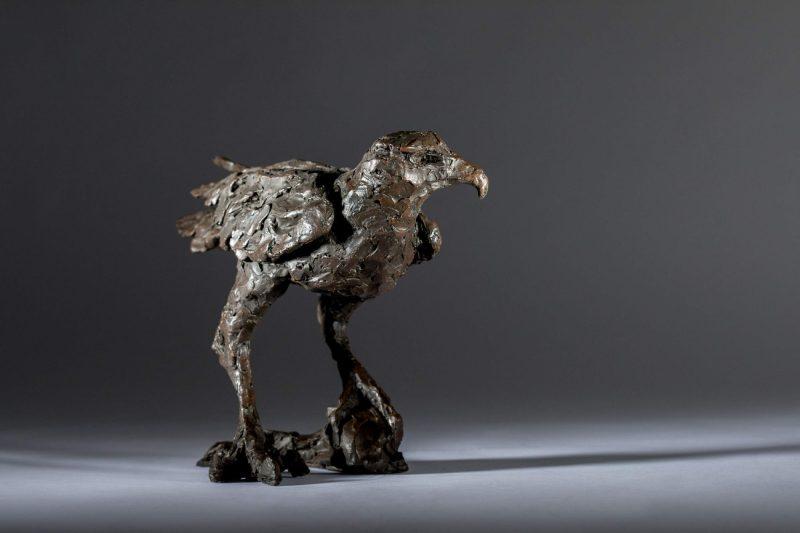 Sculpture - Bronze - Wildlife - Standing Hawk 10