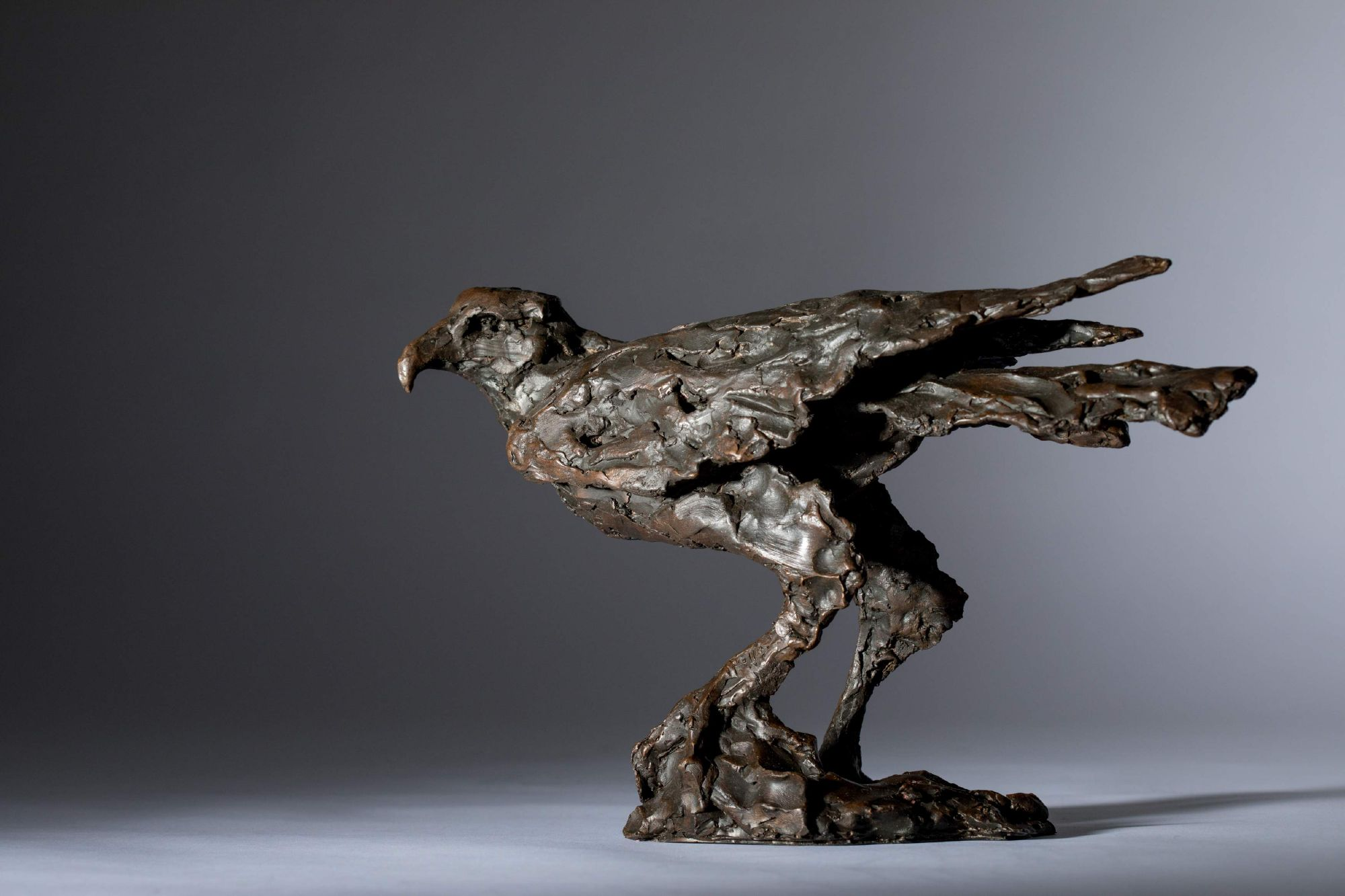 Sculpture - Bronze - Wildlife - Standing Hawk 1a