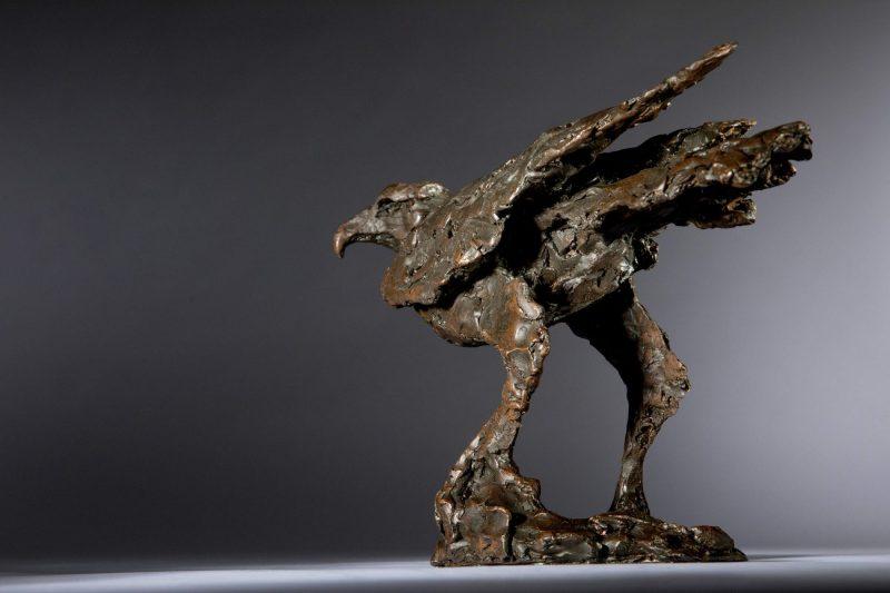 Sculpture - Bronze - Wildlife - Standing Hawk 7