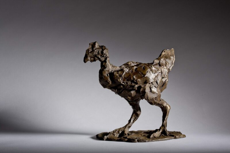 Sculpture - Bronze - Wildlife - Standing Hen 4