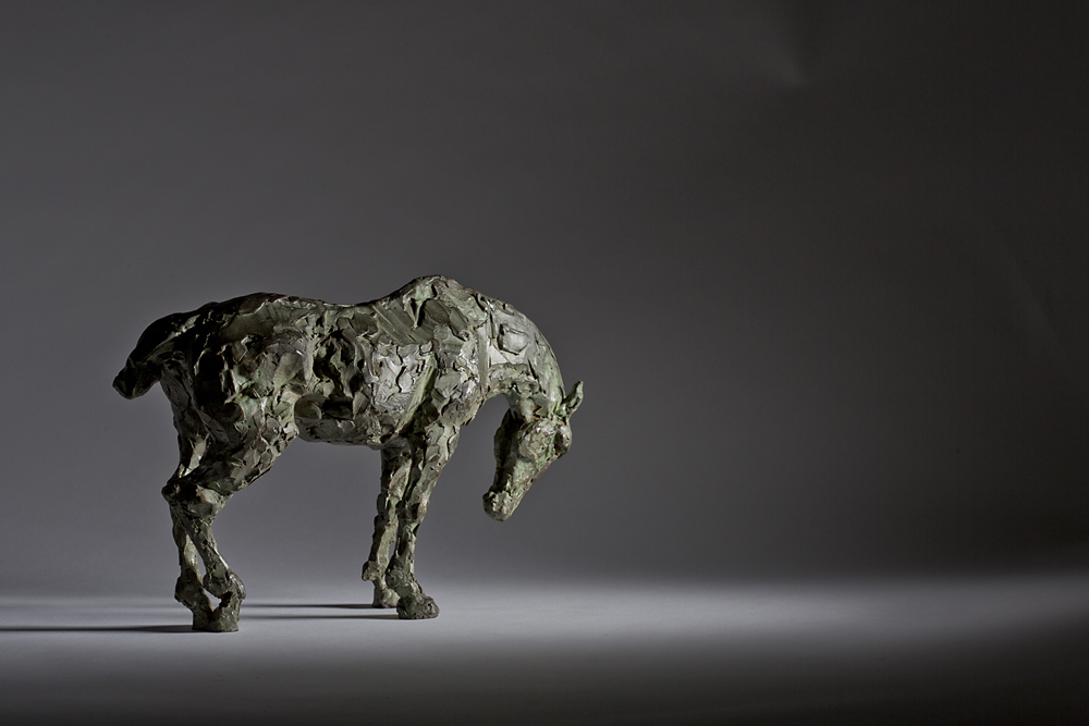 CALM REFLECTION – Sleeping Horse (In support of the Family Counselling Trust)