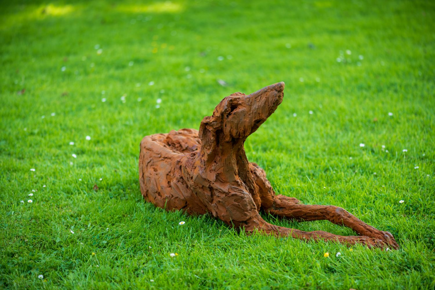 LOOKING UP – Lying Lurcher (life-size)